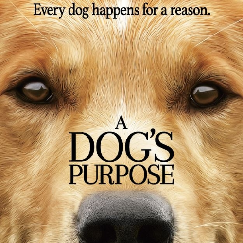 A Dog's Purpose thumbnail image image